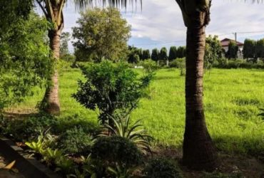 625sqm Lot for Sale