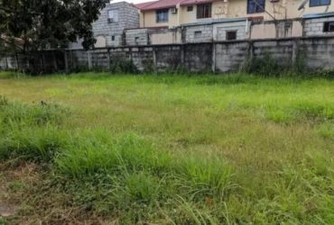 312 sqm Lot in Friendship Plaza