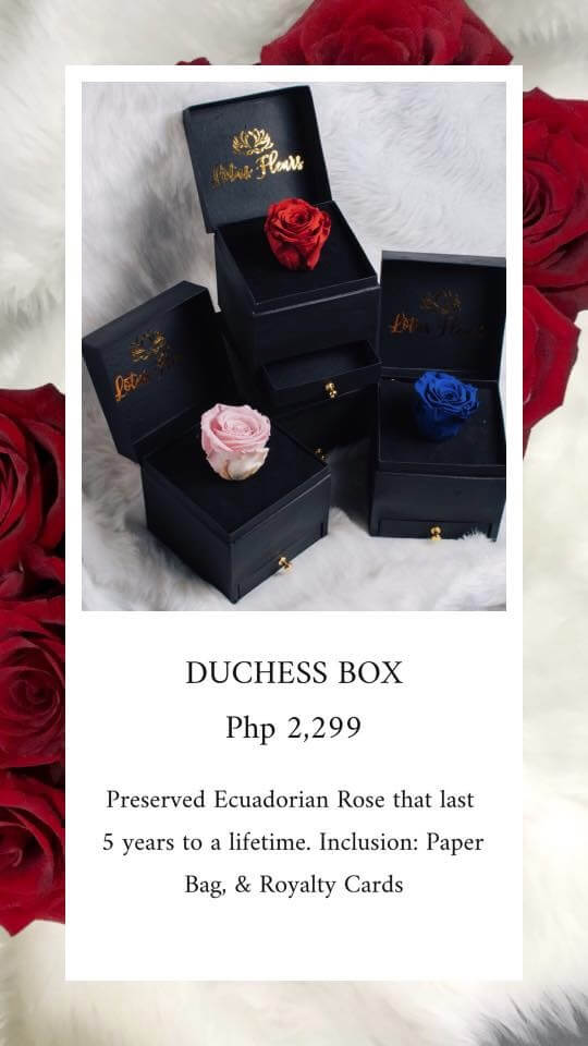 Duchess Box
