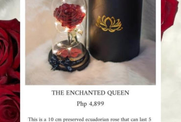 The Enchanted Queen