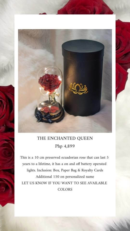 The Enchanted Queen