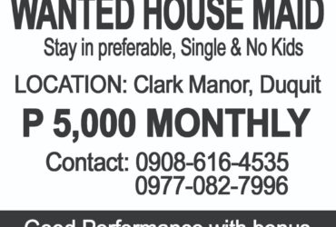 Wanted House Maid